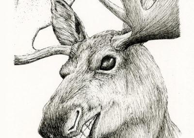 Selfie Moose